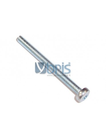 VITE  L. 40 mm  passo M3x40 acciaio zincato