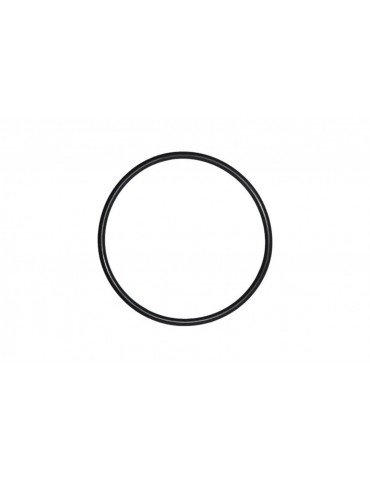 O-Ring per pompe Laing DDC